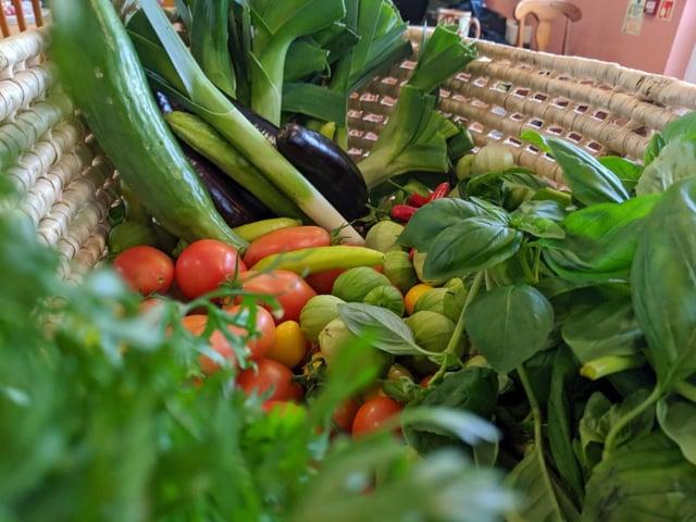 A vegetable harvest from the garden at Emmaus Village Carlton
